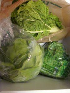 Nappa Cabbage, Bibb Lettuce, & Mustard Greens